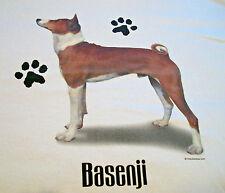 "Basenji #2 T-shirt "" White "" Xl ( 46 ~ 48 )"