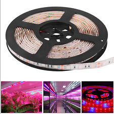 5M SMD 5050 LED Grow Light Strip Lamp Red Blue For Indoor Plants Flower New