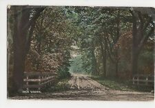 Ince Woods 1918 Postcard, A660