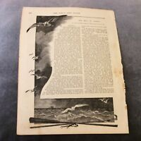 Antique Book Print - The Hill of Angels - 1888
