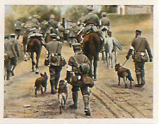 Red Cross medical company Russia Front Deutsches Heer WWI WELTKRIEG 14/18 CHROMO