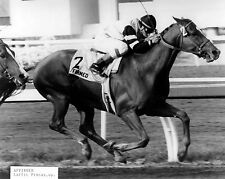 Affirmed (Jockey - Laffit Pincay) - 1978 Triple Crown Winner,  8x10 B&W Photo