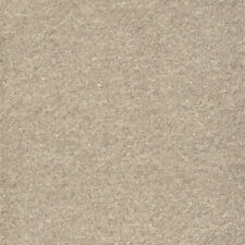 AW iSense Surprise Capricorn Beige Glitter Super Soft Carpet Remnant 5.90m x 5m