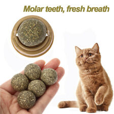 Cat Natural Catnip Toys Mint Ball Kitten Treat Ball Cats Play Cleaning Teeth