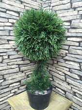 Best Artificial 2ft 60cm Cedar Topiary One Ball Tree spiral bay boxwood cone new
