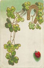 A25/ INSECT Bug Pest Comic Postcard c1910 LADY BUG Good Luck Horseshoe Clover