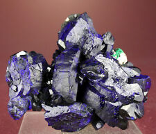 LARGE RICH BLUE AZURITE CRYSTALS GROUP w MALACHITE, MILPILLAS, MEXICO