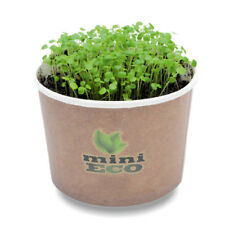 4500 Watercress Seeds Grow Kit Herbs Microgreens Plant Set Organic Sprouting Bio