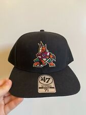 Arizona Coyotes Throwback Vintage NHL Fitted Hat Cap New