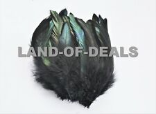 20+ Black feathers iridescent rooster schlappen 5-7 in long