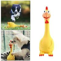 1Pc Screaming For Puppy Cat Pet Product Cats Dog Chew Toy New Teeth B9M0
