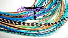 Real Feather extensions Long Natural Brown Aqua Turquoise Striped black / white