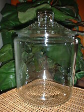 Large Clear Glass Round Apothecary Jar Canister Display Terrarium