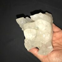 EXTRA Large Quartz Point Crystal Cluster ~ (1) Pound Specimen