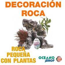Ornamento Deco Rock con Plantas MARINA - Pequeño acuario pecera tortuguera