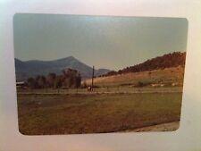 Vintage 70s PHOTO PAONIA,COLORADO TWO PEOPLE ENJOY BEAUTIFUL FARM VEGETABLES