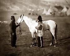 "Wounded British Army Horse Balaclava Crimea 1815 Col Clark 6x5"" Reprint Photo"