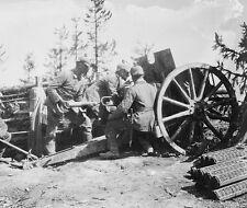 German artillery battery fires in Galicia 1914 World War I 8x10 Photo