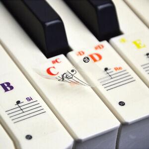 Piano Keyboard Stickers for 37/49/61/88-KEY Music Keyboard KEYNOTES Labels