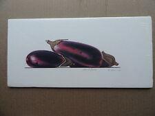 Eggplant - Al Massa 1990 Signed Un-numbered Print