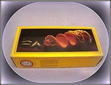 VTG 1983 BOSTON WAREHOUSE TERRA COTTA  CANTINA TACO RACK IN BOX  MADE IN ITALY