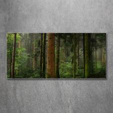 Leinwandbild Kunst-Druck 125x50 Bilder Landschaften Wasserfall im Wald