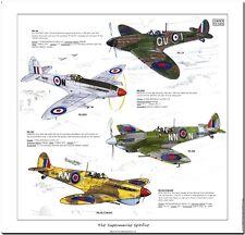 THE SUPERMARINE SPITFIRE - Fine Art Print - WWII Fighter Aircraft MKIA XXIV MKVB