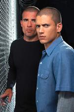 Wentworth Miller Dominic Purcell Prison Break 11x17 Mini Poster