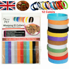 12 Whelp ID Collars Whelping Newborn Puppy & Kitten ID Collar Bands For Breeders