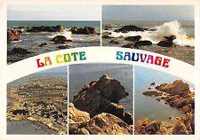 BT10908 La cote sauvage avec le rocher de l ours          France