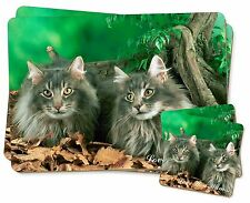 Blue Fluffy Cats 'Love You Mum' Twin 2x Placemats+2x Coasters Set in, AC-55lymPC