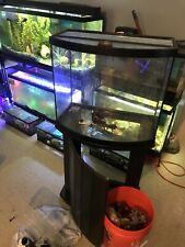 Bow-front Aqueon Tank With Wooden Stand, Hinged Glass Top ,Heater & live Rock.