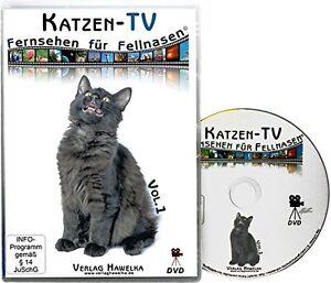 Katzen-TV - Fernsehen für Fellnasen - Vol. 1 - Der ultimative Katzenspaß!