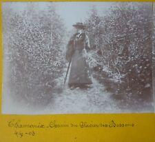 VUE STEREOSCOPTIQUE - CHAMONIX CHEMIN DU GLACIER DES BOSSONS 1903 - STEREO PHOTO