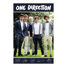 One Direction Poster. Funky Boy Band Pop Music Cool Gift Idea For Her