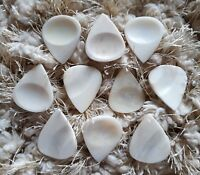 Set of 10 Camel Bone guitar picks plectrum with thumb and finger impression gift