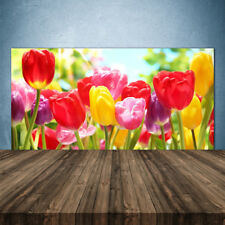 Crédence de cuisine en verre Panneau 140x70 Floral Tulipes