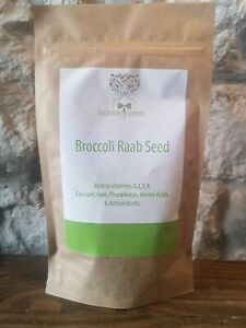 GOODNESS GREENS BROCCOLI RAAB SEEDS SPROUTS / MICRO GREENS SUPERFOOD