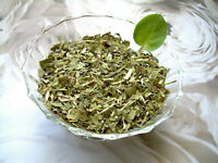 Tea Herb Infusion South American Yerba Mate and Organic Peppermint Leaf Blend