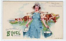 ST IVEL CHEESE: Poster type advertising postcard (C18769)