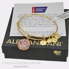 Authentic Alex and Ani Celebrate Today Yellow Gold Charm Bangle-CBD