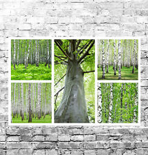 STUNNING ABSTRACT FORESTS CANVAS COLLAGE #3 QUALITY LANDSCAPES A1 BOX CANVAS