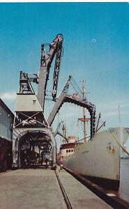 Banana Docks Port of NEW ORLEANS Louisiana U.S.A. Crocker Co. Robertson Postcard