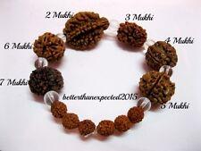 Rudraksh Rudraksha 2 3 4 5 6 7 Mukhi (Face) Beads Mala Wrist band bracelet--AA++