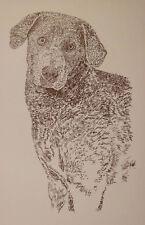 Chesapeake Bay Retriever Dog Art Print #37 Kline adds dogs name free. Chessie