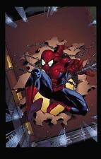 Untold Tales of Spider-Man Omnibus by Kurt Busiek (Hardback, 2012)