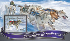Togo 2016 MNH Sledge Sled Dogs 1v S/S Alaskan Husky Huskies Dog Stamps