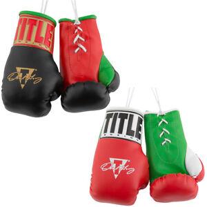 """Title Boxing 5"""" Authentic Detailed """"Oscar de la Hoya"""" Mini Lace Up Gloves"""
