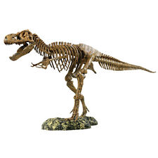 T-Rex Skeleton Model: Model: EDU37329