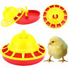 Chicken Feeder Drinker Automatic Fountain Poultry Water Drink Bird Drinking tool